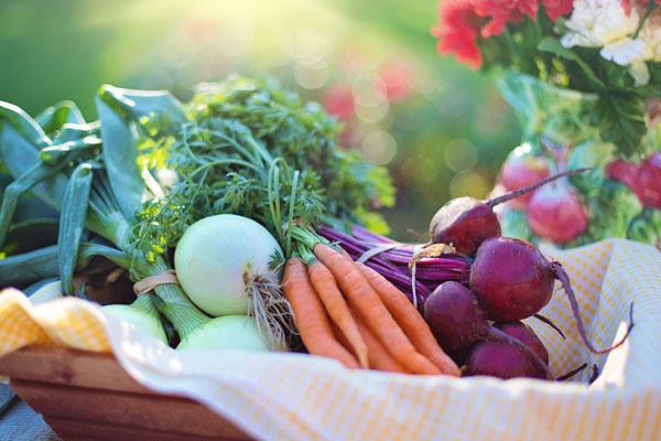 Una cesta llena de hortalizas