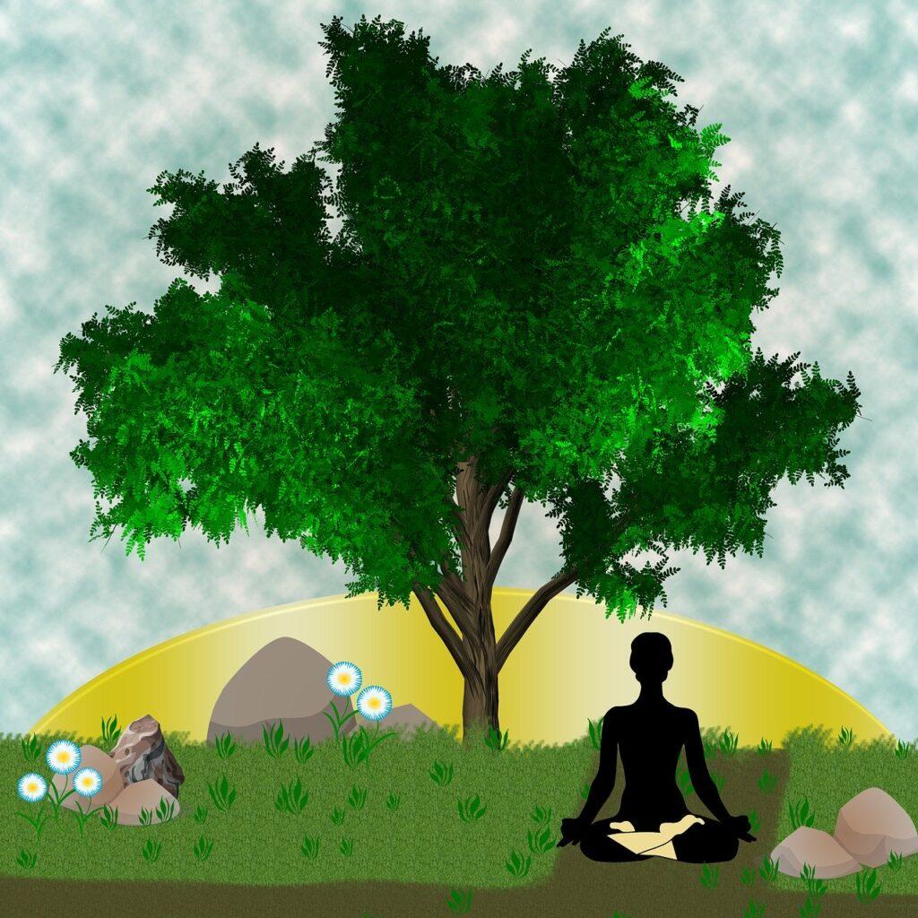 hábitos saludables equilibrio mente cuerpo alma