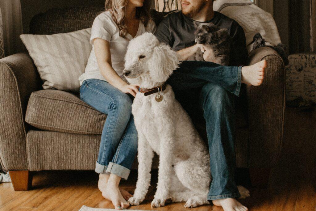familia en cuarentena en casa ginsin